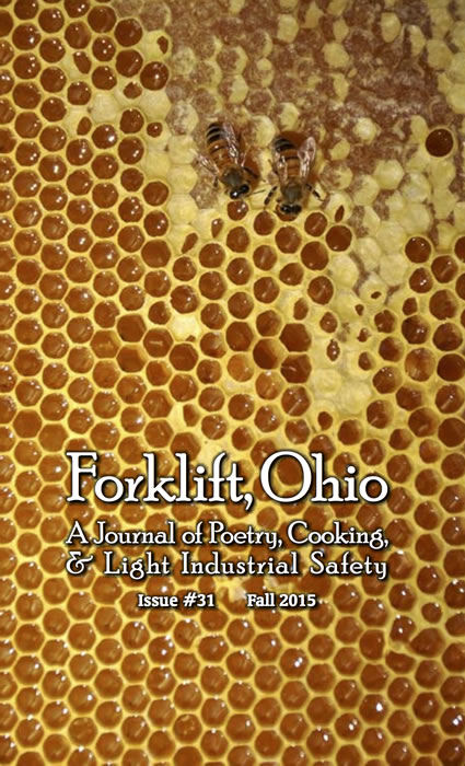 Forklift, Ohio Issue #31 (Fall 2015) - cover